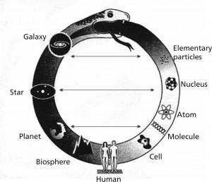 Oroborus for Cosmology